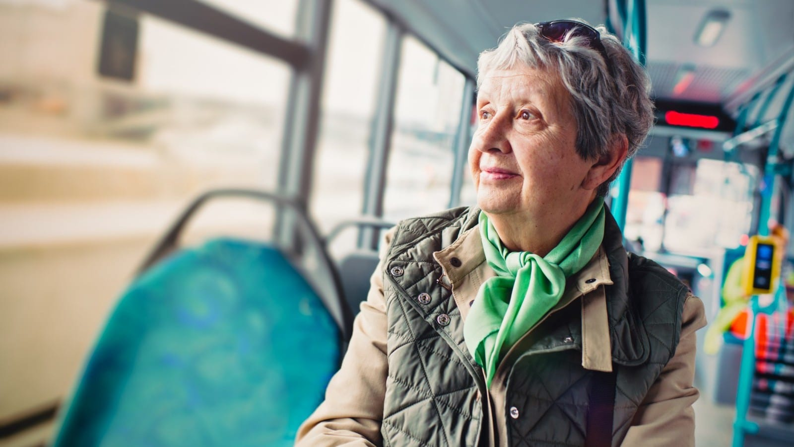 Elderly Woman Public Bus Stock Photo
